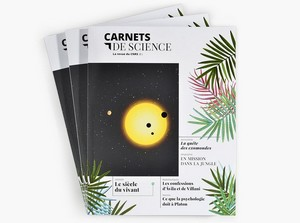 cnrs-carnets-de-science